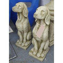 SEATED HOUNDS
