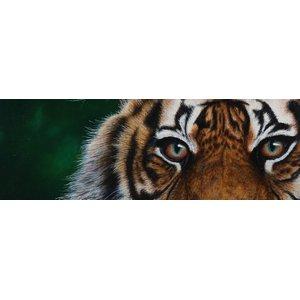 Sketch For Survival 2020 - Wildlife & Wild Spaces